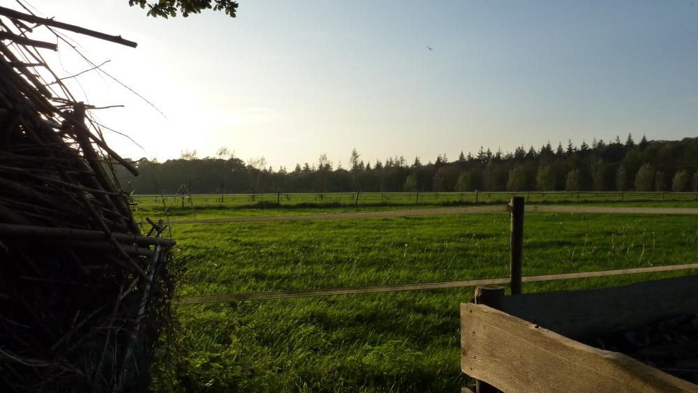 Uitzicht over de velden